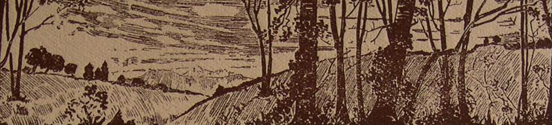 page2c.jpg